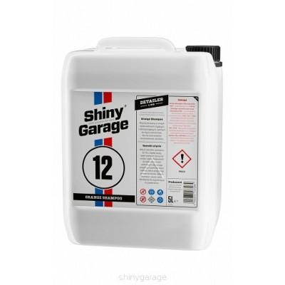 SHINY GARAGE ORANGE CAR...