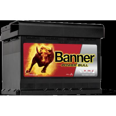 BANNER POWER BULL...